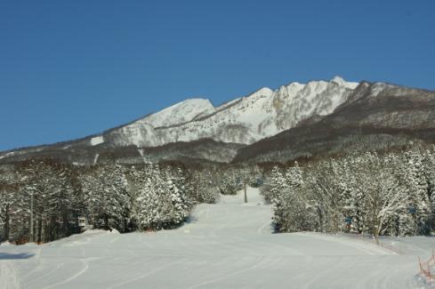 妙高 妙高杉之原滑雪場雪道介紹